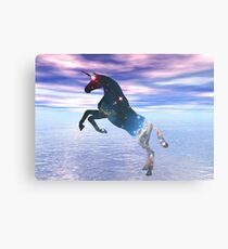 Unicorn of the stars Canvas Print