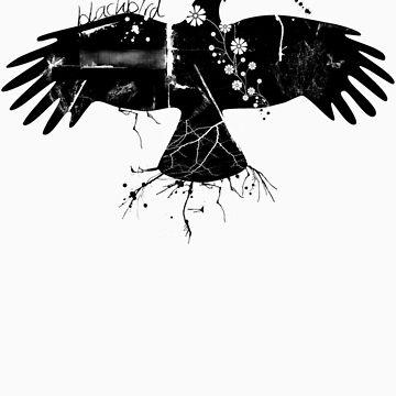 Black Dove by Hann87