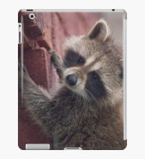 Just Another Brick in the Wall (to climb) iPad Case/Skin