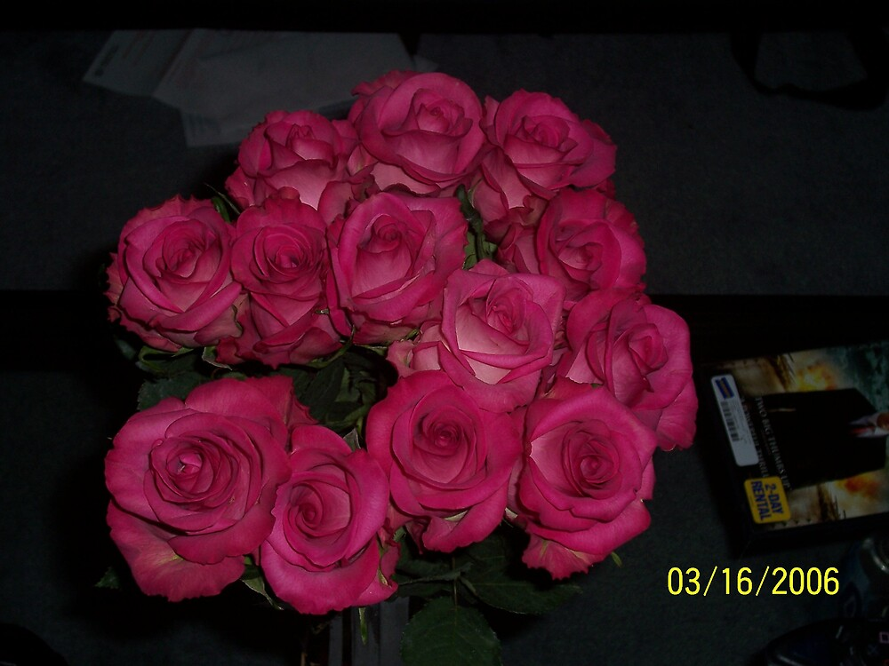 Deep Pink Roses by phursey1