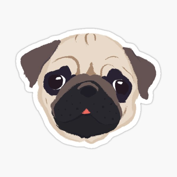 Cute Pug - Hand Drawn Sticker