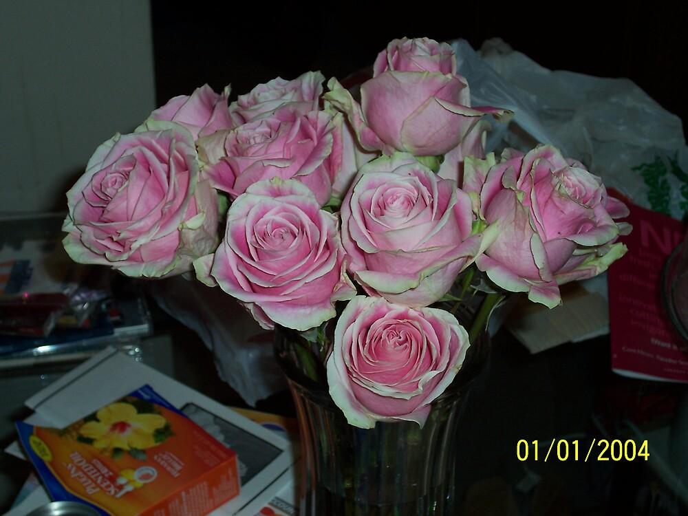 Pink & White Rose Take #4 by phursey1