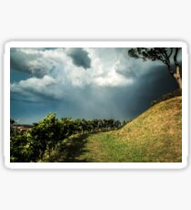 Storm over the vineyard Sticker