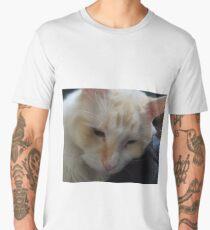 The Purrfect Oportunity Men's Premium T-Shirt