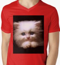 Cat Bed & Throw Pillows T-Shirt