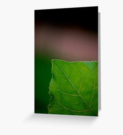 Green Corner Greeting Card
