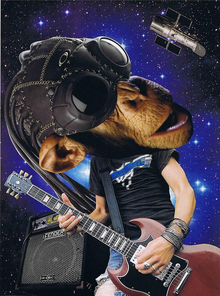 "Chimp plays ""Joes Garage"" by atomikboy"