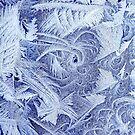 Frosty Window by George Robinson