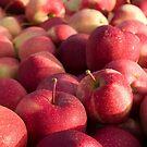 Apple Harvest by George Robinson