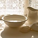Wash Bowl and Pitcher. by George Robinson
