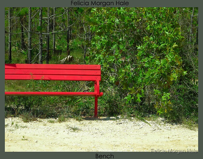Bench by Felicia Morgan Hale