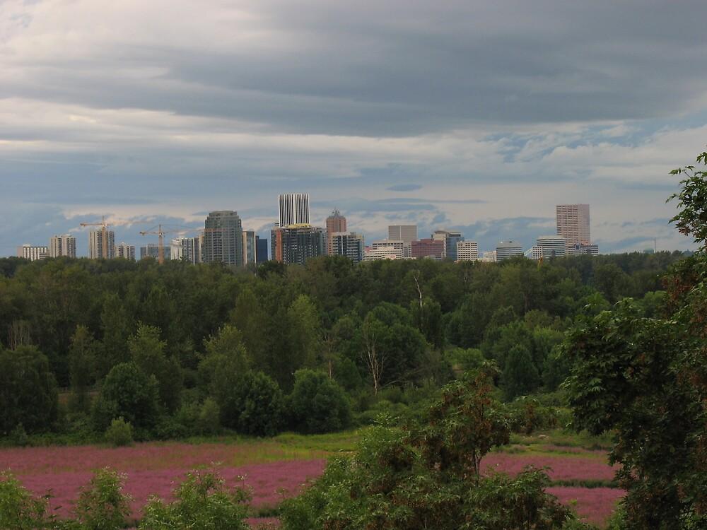 Portland over Oak's Bottom by Cheezweezl