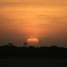 African Sunset by Dene Wessling