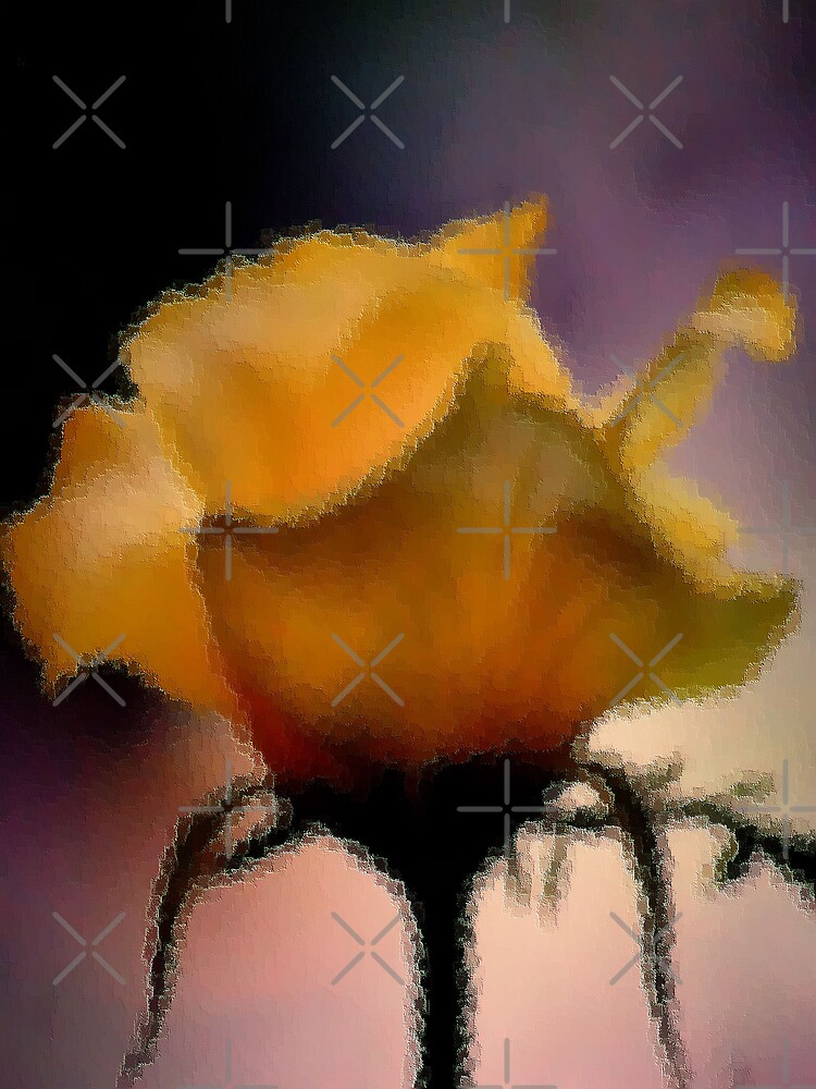 GLASS IMAGE; THE LIME ROSE by Magriet Meintjes
