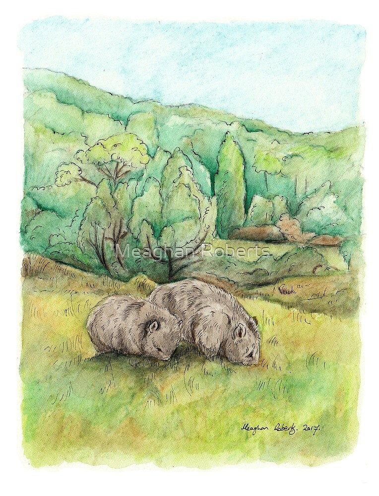 Wombats at Cradle Mountain by Meaghan Roberts