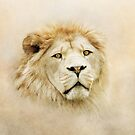 Lion Portrait by peaky40