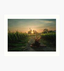 Framing sunset Art Print