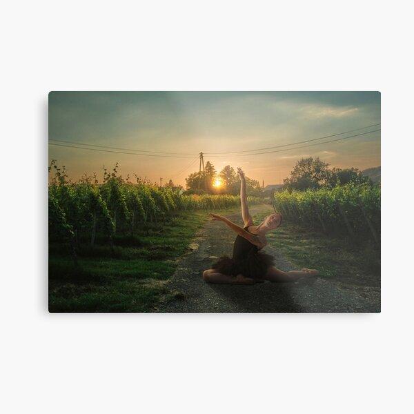Framing sunset Metal Print