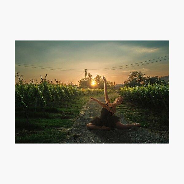 Framing sunset Photographic Print