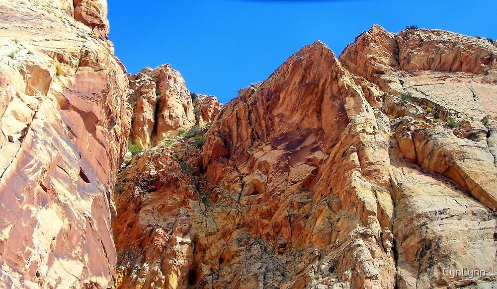 Utah Rock Formations by CynLynn