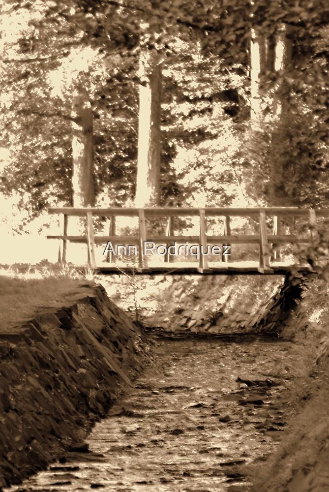 Bridge to the Past by Ann Rodriquez