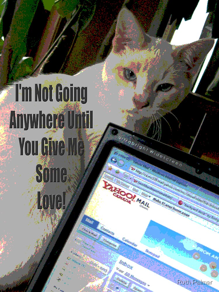 Gimme Some Love Cat by Ruth Palmer