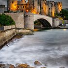 Conwy Castle At Night by Adrian Evans