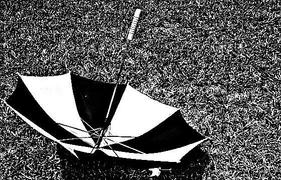 Umbrella by bornfree