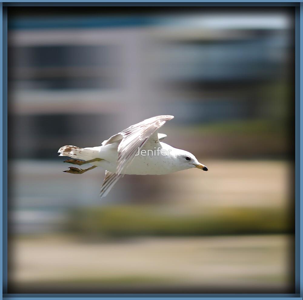 Flying Fast by Jenifer