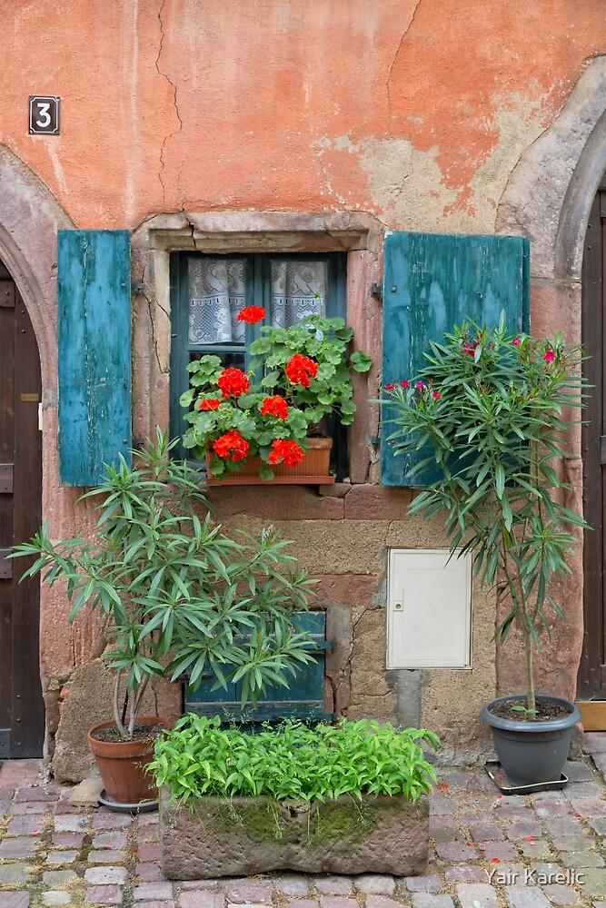Window and Flowers by Yair Karelic