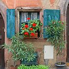 Window and Flowers by Yair Karelic