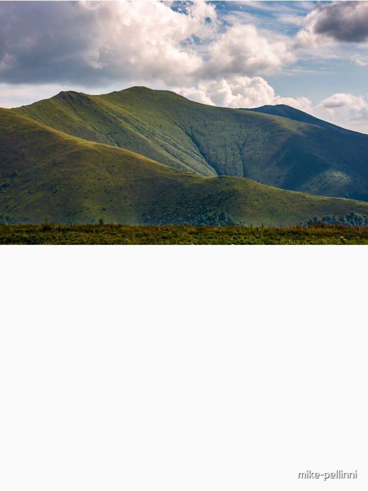 Carpathian Mountain Range in summer by mike-pellinni