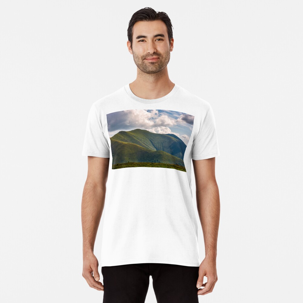 Carpathian Mountain Range in summer Premium T-Shirt