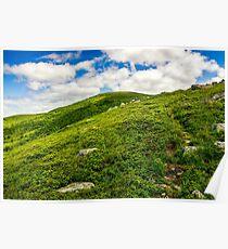 footpath through the mountain ridge Poster
