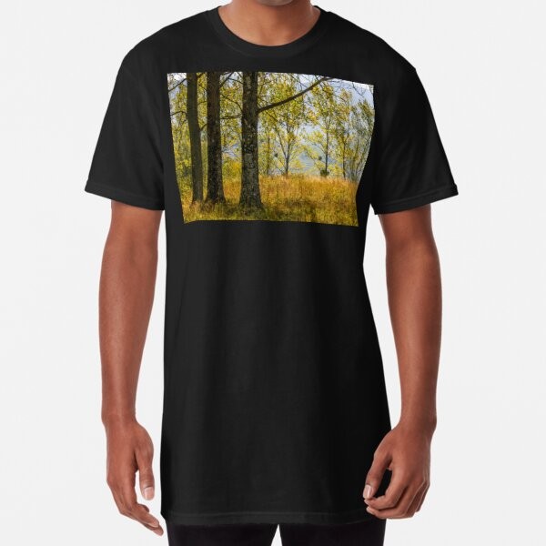 autumn forest in yellow foliage Long T-Shirt