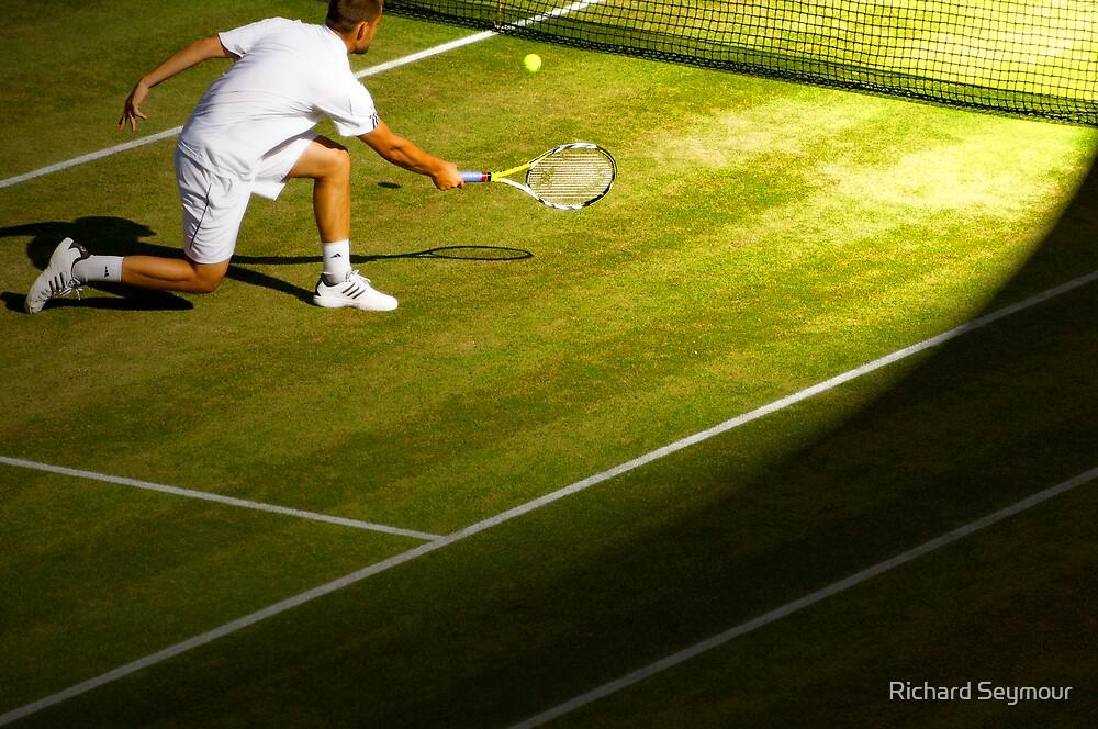 Wimbledon 08 Detail 01 by Richard Seymour