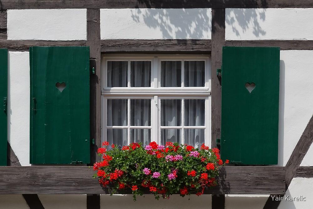 Green Window with Geranium Flowers by Yair Karelic