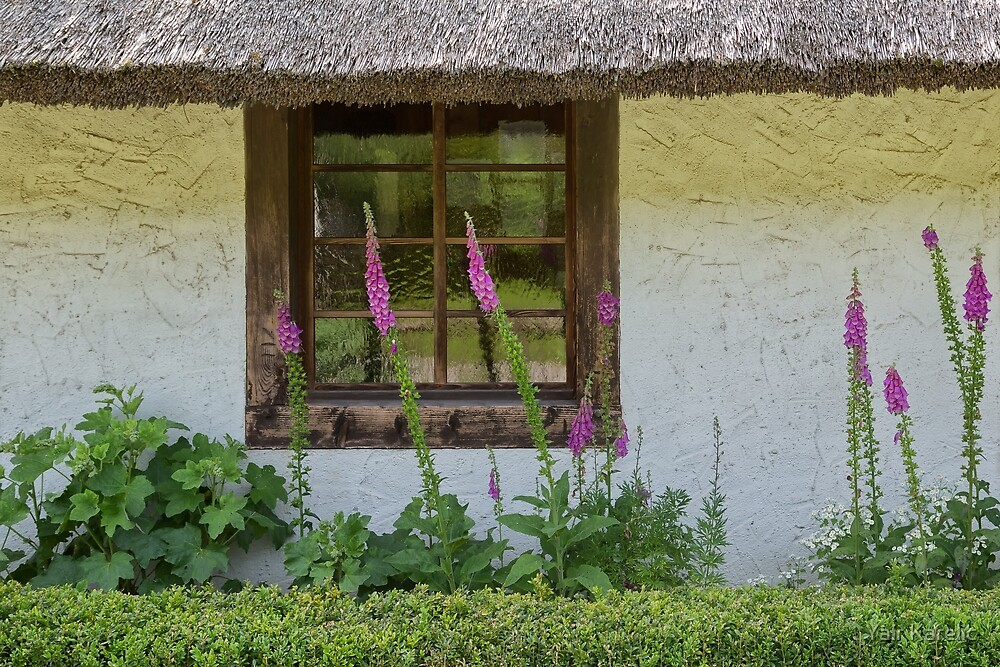 Old Window and Flowers by Yair Karelic