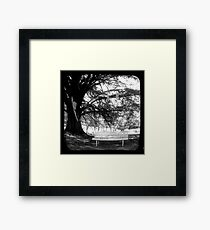 Park Bench - TTV Framed Print