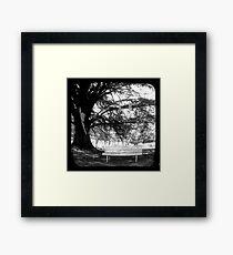 Park Bench - TTV Framed Print