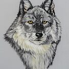 Northern Gray Wolf   (pastel) by Linda Sparks