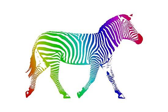 Studio Dalio - Rainbow Zebra Photo Print