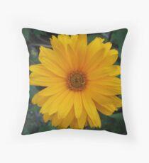 False Sunflower Throw Pillow
