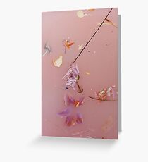 Harry Styles Floral Album Photoshoot Greeting Card