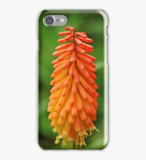 Torch Lily iPhone Case/Skin
