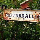 Gold Country Street Sign by Barbara  Brown