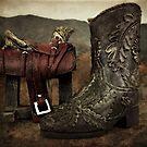 Wild West Hero by Scott Mitchell
