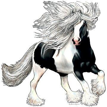Gypsy Horse Casanova by bhymer