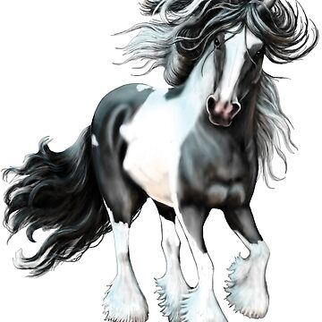 Prince, Gypsy Vanner Horse by bhymer
