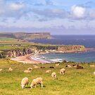 Coastal View by peaky40